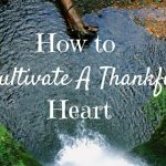 How to Cultivate a Thankful Heart
