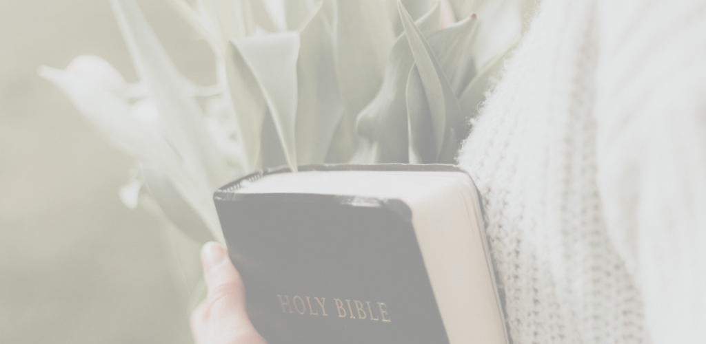 Did you know reading the Word of God can help you in your daily life? Here are 15 promises that will inspire you to read the Bible.