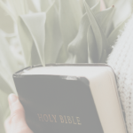 15 Promises that will Inspire you to read the Bible